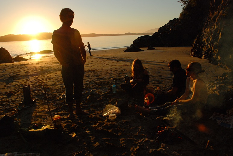 field course students on beach
