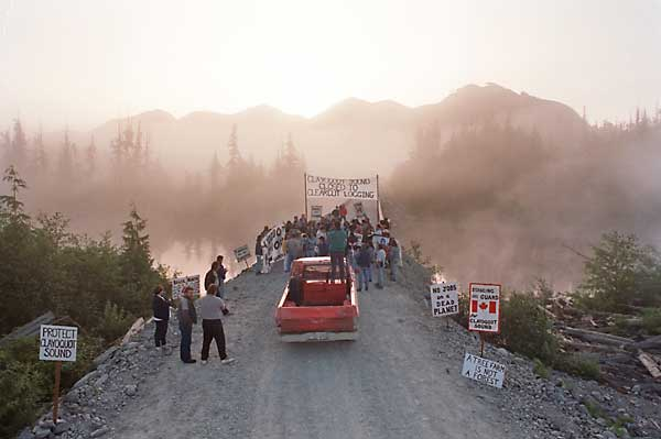 clayoquot forst protest